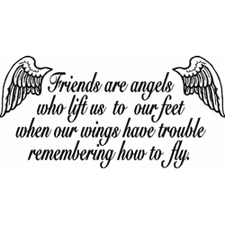 C0281 Friends are angels…