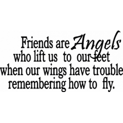 C0282 Friends are angels…