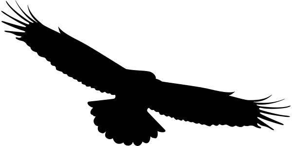 P Ptak Odstraszający Na Szybę Odstraszacze Ptaków Drukant